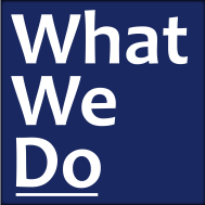 2. What We Do